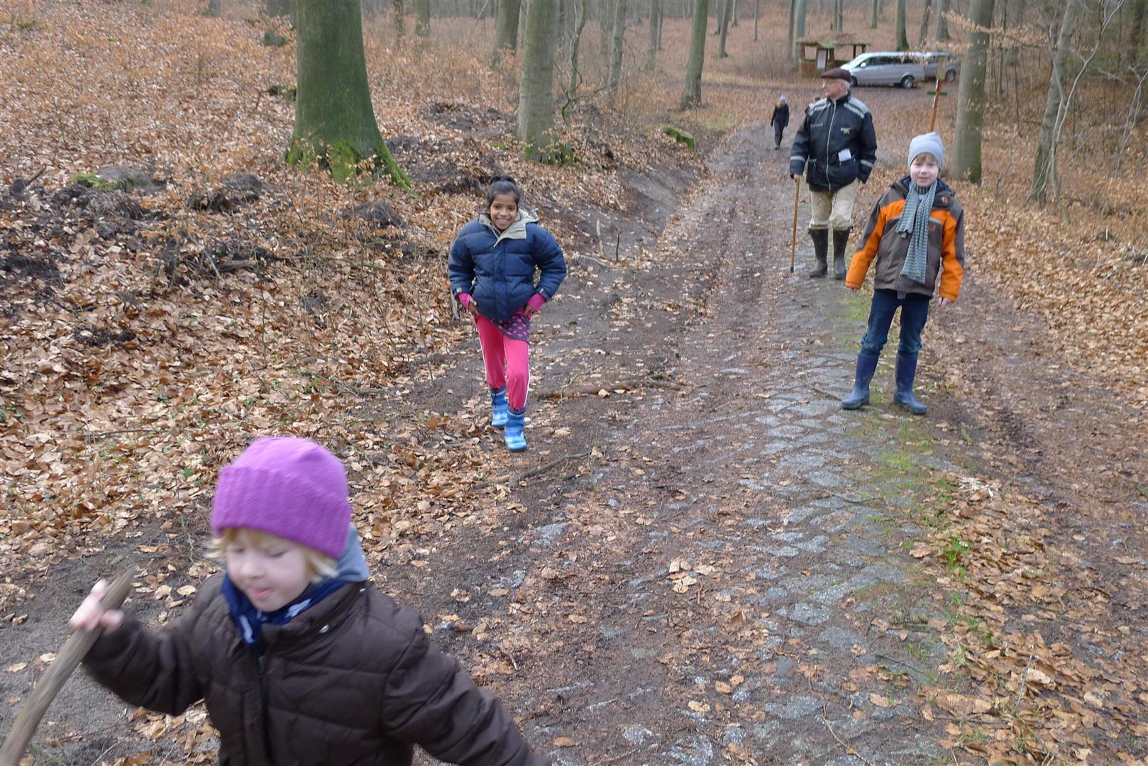 8-hiking-in-the-johannesberg-forest