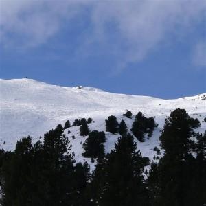 view to above treeline