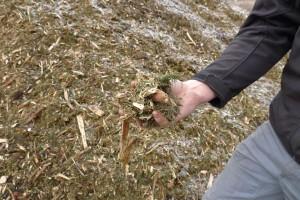 chips from logging debris