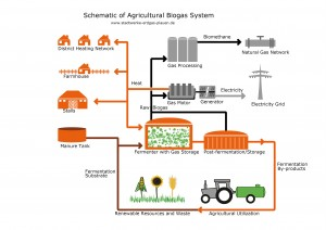 Biogas system in Plauen, Germany includes production of biomethane
